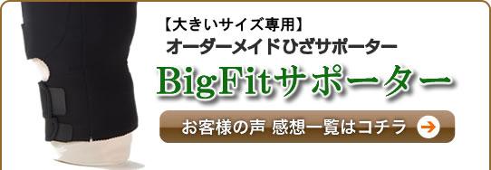 【感想】BigFitひざサポーター