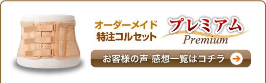 【感想】オーダーメイドコルセット [本腰] プレミアム